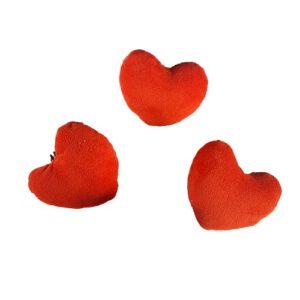 قلب پولیشی